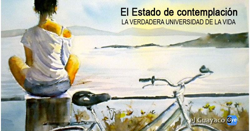 EL ESTADO DE CONTEMPLACIÓN (la verdadera Universidad de la Vida)..   LÉELO